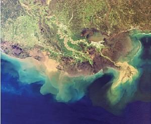 Honking big Deadzone in Gulf of Mexico means we are killing the ocean.